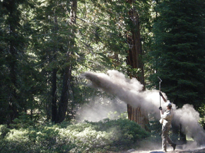 An agency staff member disperses ash by using a shovel to throw the ash from campsites in the John Muir Wilderness.